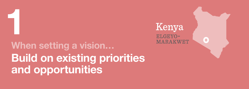 When setting a vision Build on existing priorities and opportunities