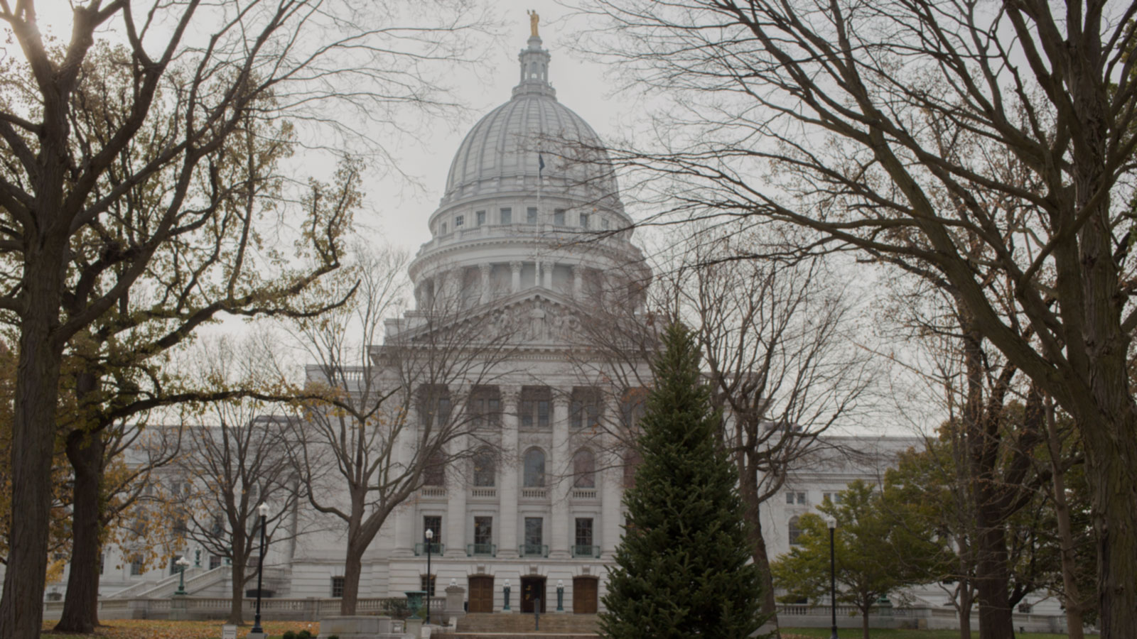 Who's Using Data in Madison, Wisconsin?